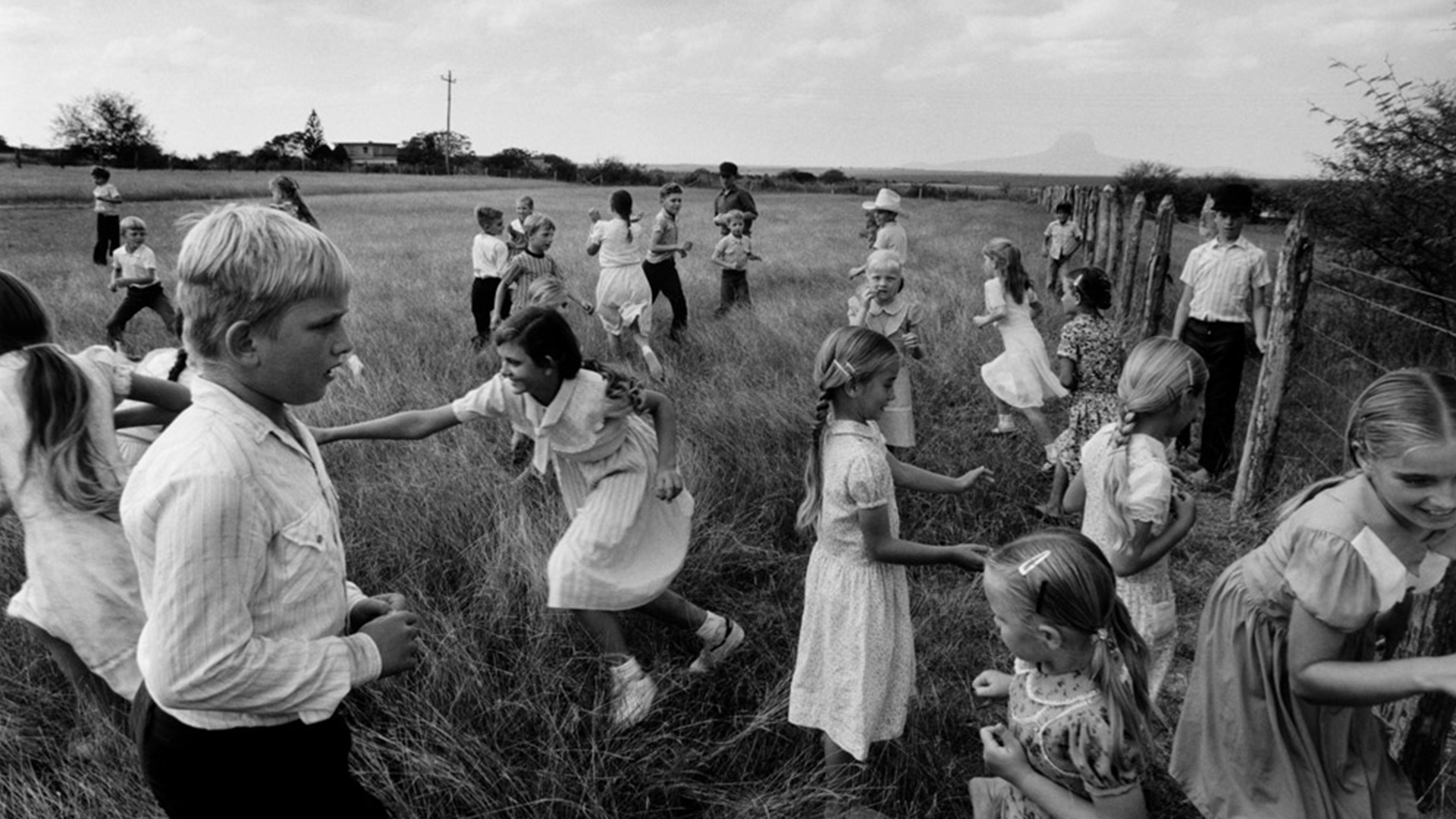 The Larry Towell Show