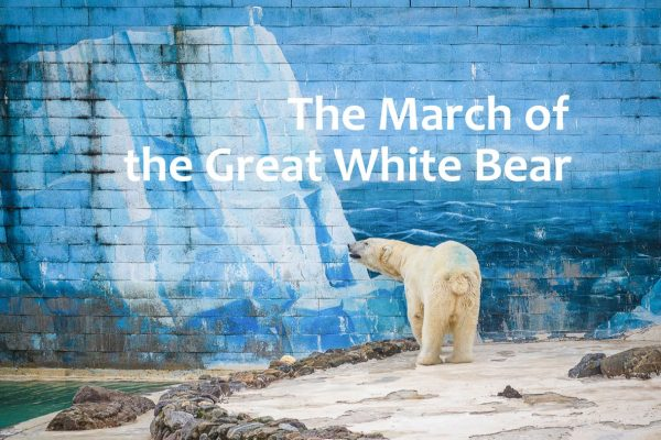 The March of the Great White Bear - Wallpaper Sheng-Wen Lo
