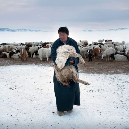 Environmental migrants: the last illusion. Ulaan Baator, Mongoli